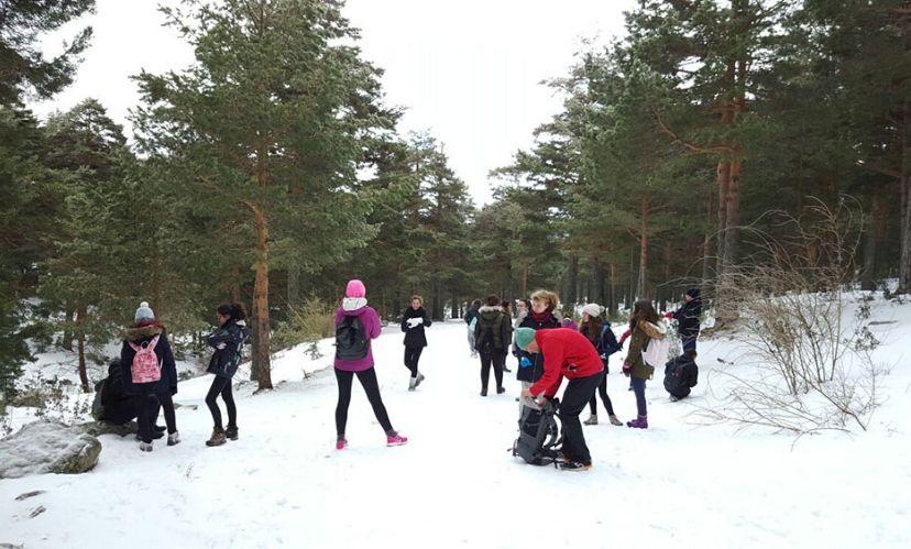 campamento ingles nieve nevacerrada